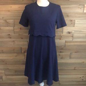 ⭐️ASOS Cotton Navy Dress w/scalloped edges Size6⭐️